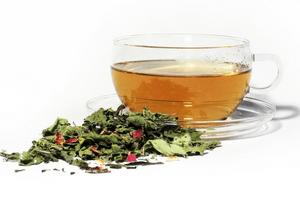 Teepflanze Hintonia beeinflusst Zuckerstoffwechsel positiv